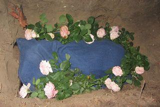 Gypsy's grave - 2