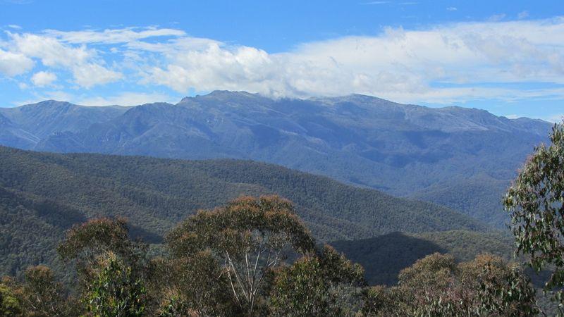 Scammell's Lookout vistas - 3